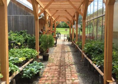 Henrys-Gardens-Outside-Walkway