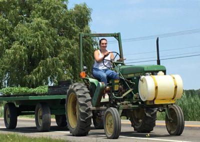 Henrys-Gardens--Tractor